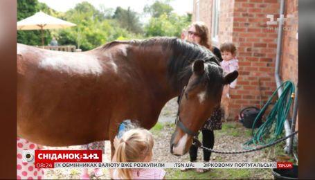 В английской деревне основали клуб, в котором животные помогают общаться детям с аутизмом