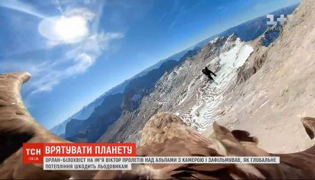 Орел Виктор снял, как климатические изменения разрушают горные ледники в Альпах