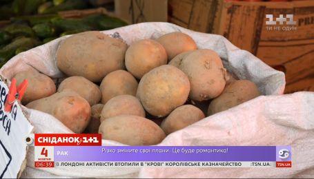 Где искать дешевую картошку в Украине