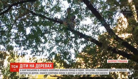 Прятался на дереве: более семи часов искали 8-летнего мальчика в Днепропетровской области