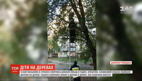 На Дніпропетровщині службовий собака врятував хлопчика, який застряг на дереві