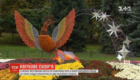 В Киеве на Певческом поле высадили более 20 тысяч кустов хризантем