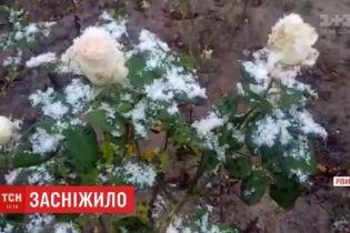 Первый снег выпал на Ровенщине и Волыни