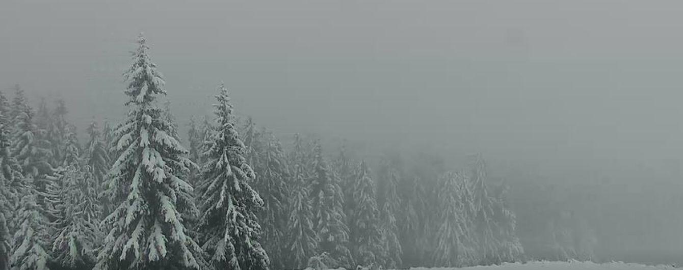 Карпати засипало снігом: висота покрову подекуди сягає 25 сантиметрів