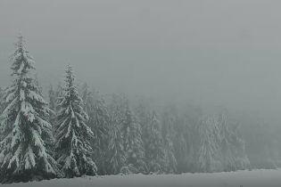 Карпаты засыпало снегом: высота покрова местами достигает 25 сантиметров