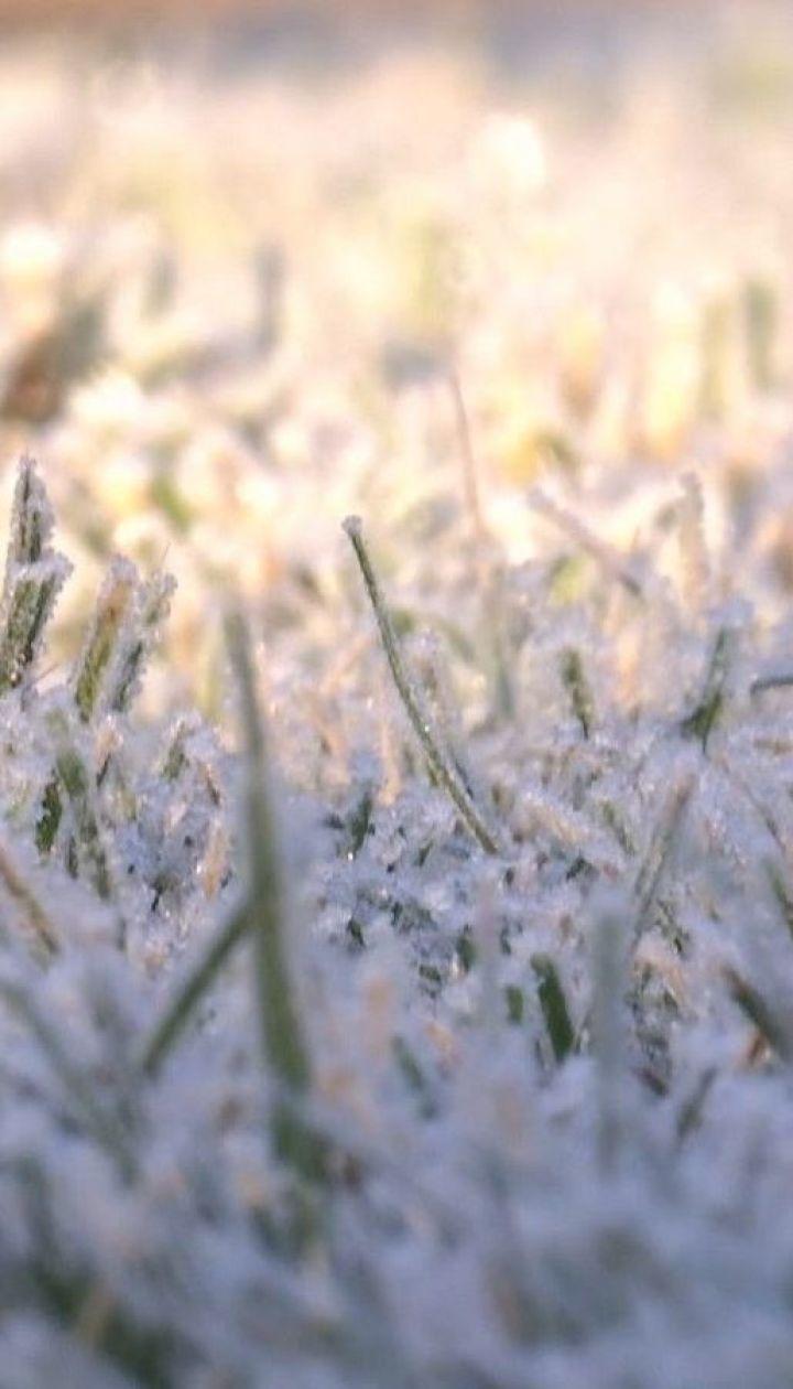 Синоптики предвещают в Украине несколько морозных дней, а потом снова потепление