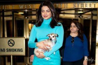 В бирюзовой мини-юбке и с собакой на руках: Приянка Чопра в Нью-Йорке
