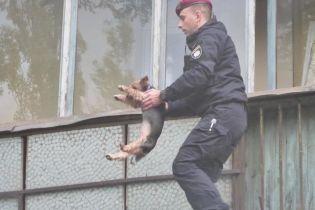 В Киеве на Лесном вспыхнула квартира – из огня вытащили четырех детей и собачку