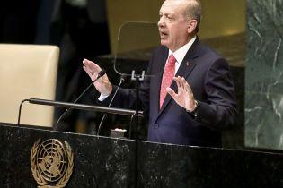 Эрдоган будет игнорировать критику его военной операции в Сирии