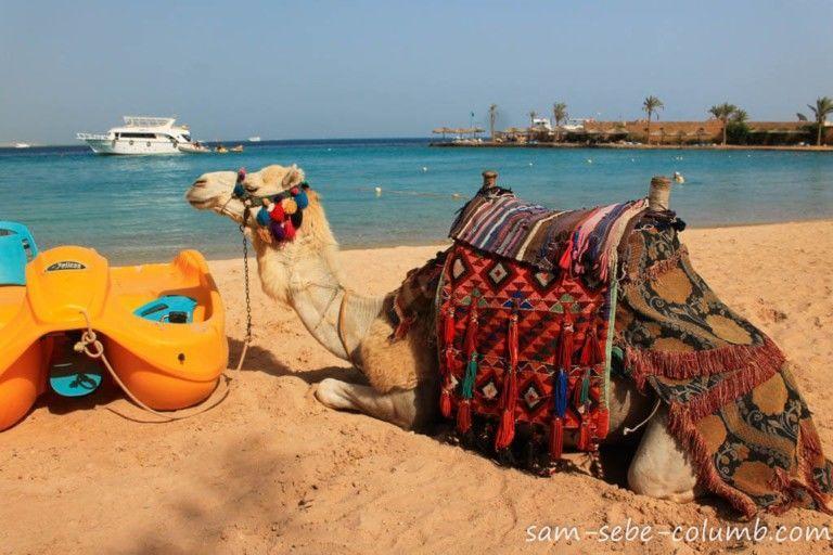 Єгипет, для блогів_3