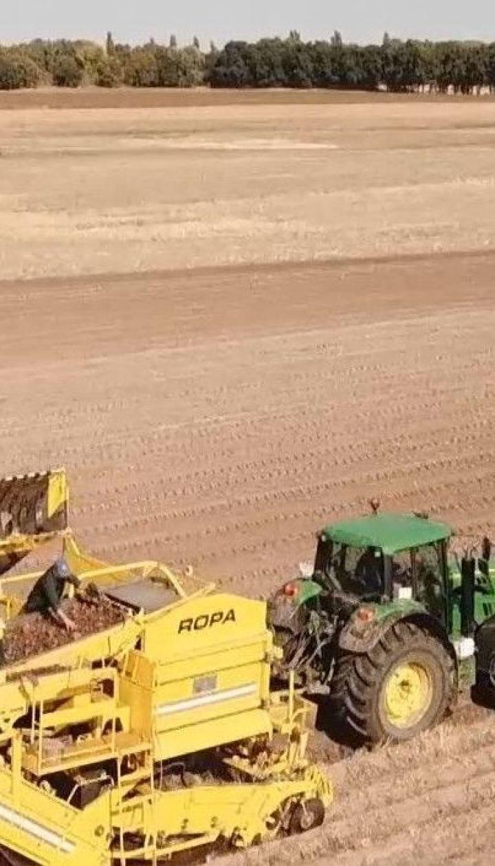 Земельная реформа: в ВР предлагают запретить иностранцам покупать землю до 2024 года