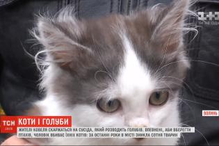Жители двух улиц Ковеля утверждают, что их котов ловит и убивает сосед