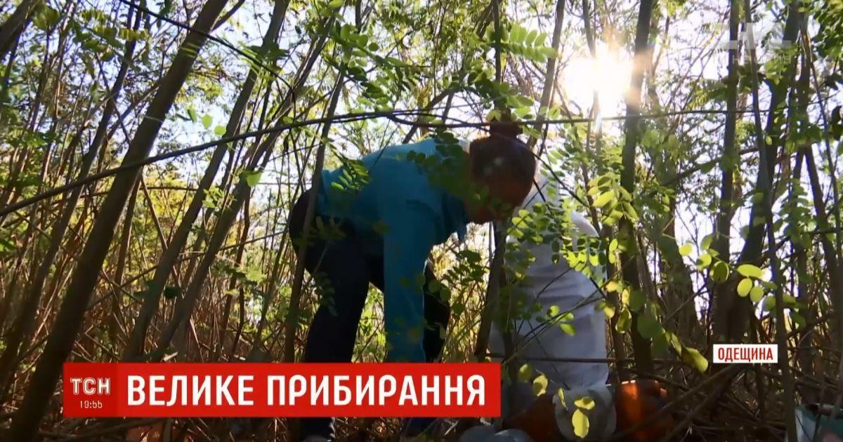 В Одесской области волонтеры сплотились на уборку берегов Днестра