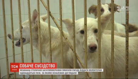 Мешканці багатоповерхівки в Києві змусили сусіда віддати волонтерам з десяток його псів