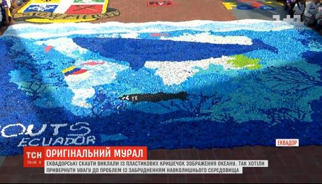 Эквадорские скауты сложили с пластиковых крышечек изображение океана