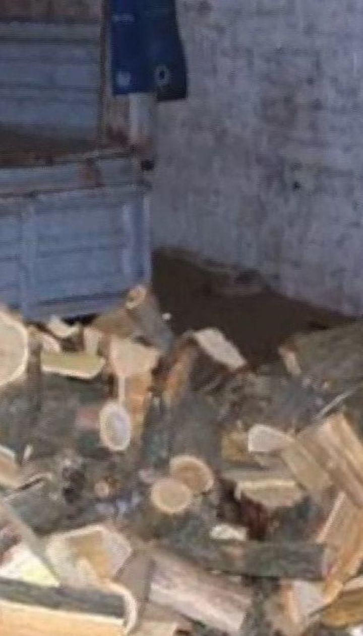 Полицейские задержали семерых человек, которые незаконно вырубили лес под Мариуполем