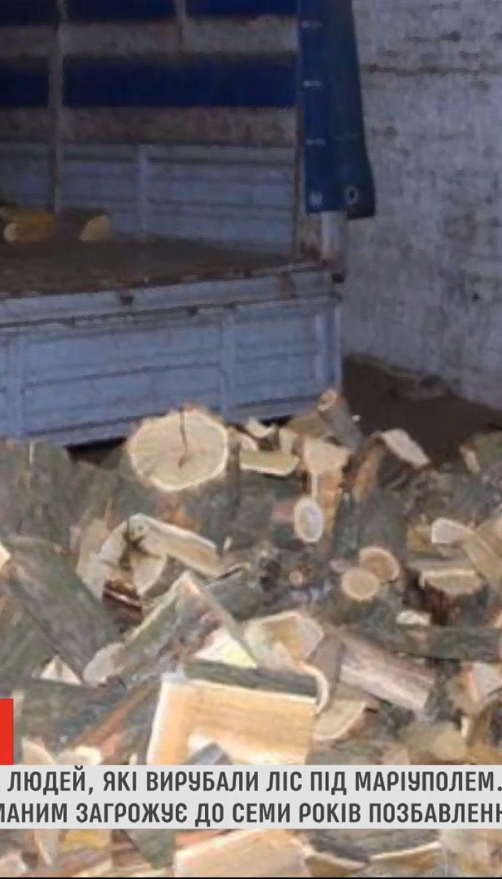 Поліцейські затримали сімох людей, які незаконно вирубали ліс під Маріуполем