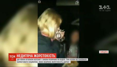 В Сумах две девушки утопили в колодце котят и сняли расправу на видео