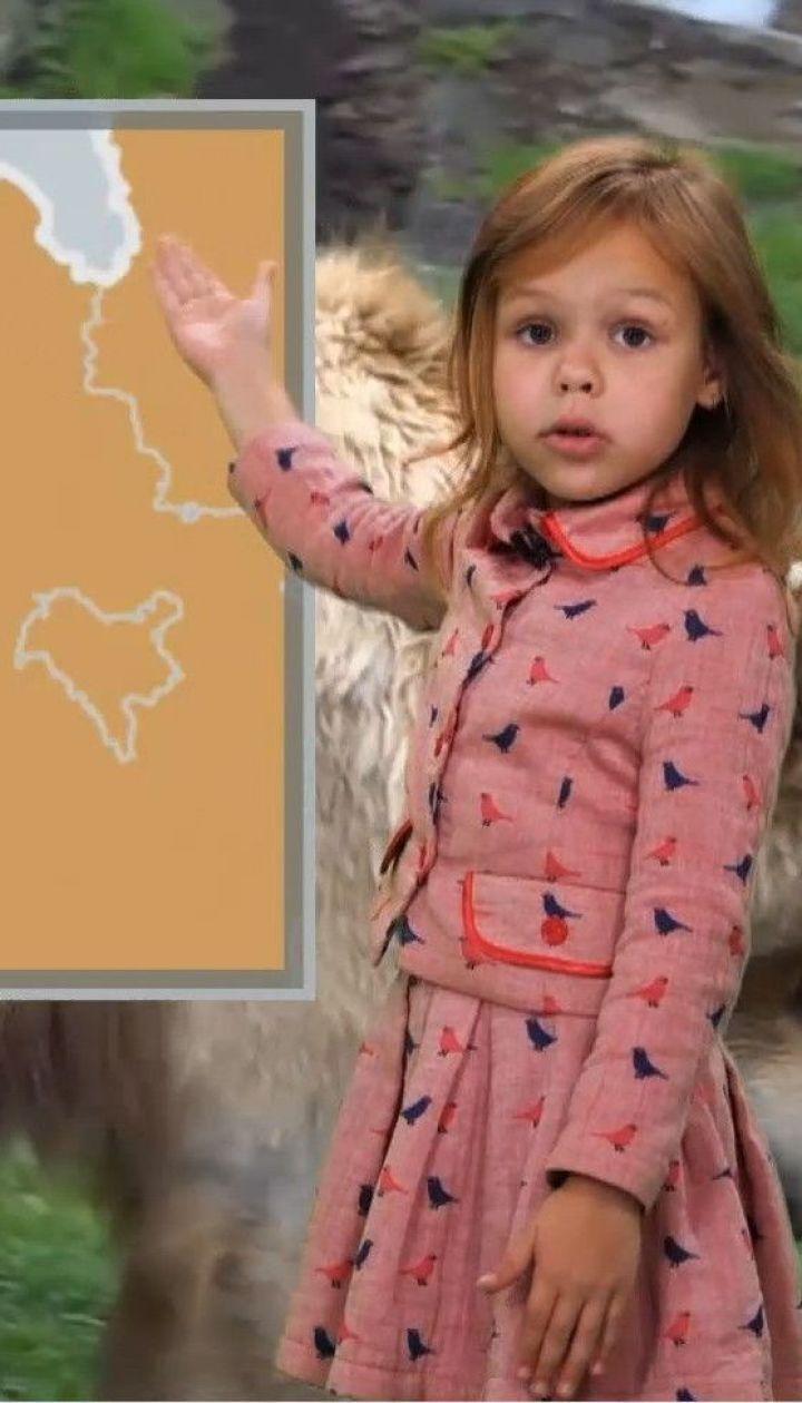Погода от Фроси на 19-20 октября в Украине