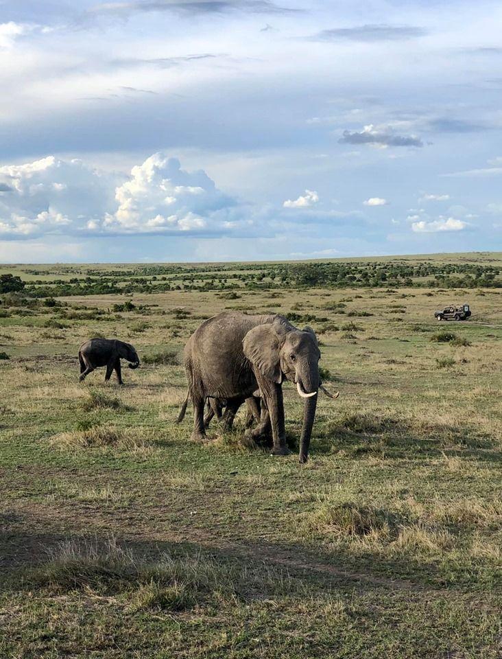 Кенія, для блогів_5