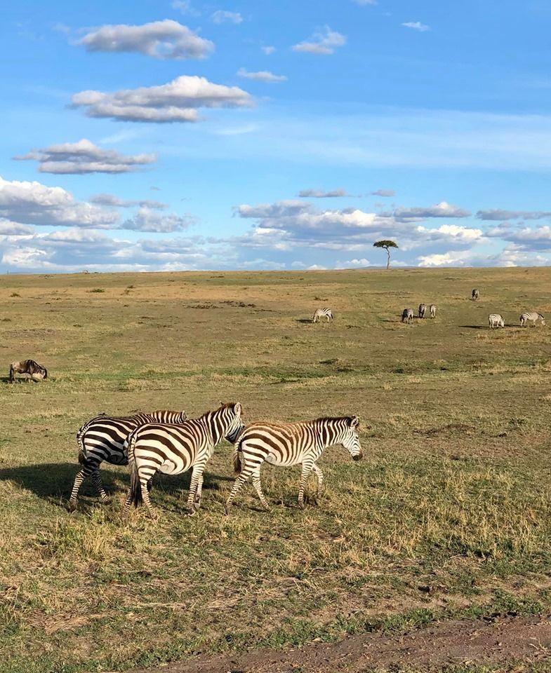 Кенія, для блогів_6