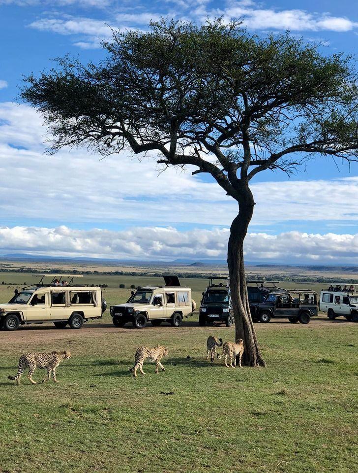 Кенія, для блогів_7
