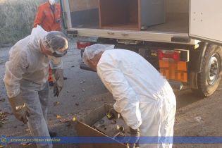 СБУ наткнулась на источник радиации в Одесской области