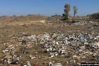 В Крыму на заброшенном карьере нашли разбросанными почти две тонны костей животных