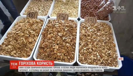 Вкусные и полезные: какая цена на грецкие орехи во время сезона сбора