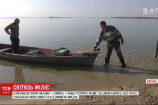 Спасти Свитязь: самое глубокое озеро Украины катастрофически мелеет