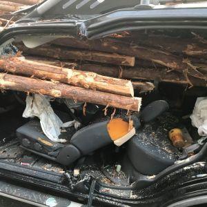 У США водій ледь не залишився без голови після зіткнення з наповненою деревиною вантажівкою