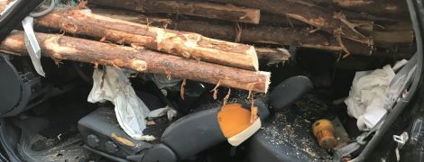 В США водитель едва не остался без головы после столкновения с наполненным древесиной грузовиком