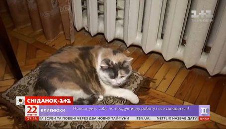 Чи готова Україна до опалювального сезону – Економічні новини