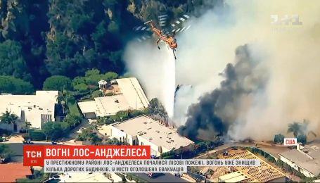 Престижный район в Лос-Анджелесе охватили лесные пожары