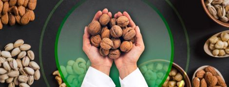 Все, что нужно знать про орехи