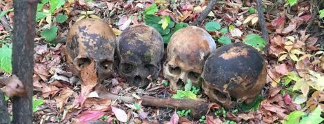 В Николаеве мужчина принес экс-любимой под квартиру человеческий череп, еще один выбросил на улице в урну