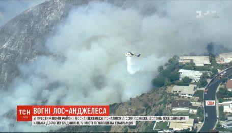 Пожар в Лос-Анджелесе: дотла сгорели несколько роскошных особняков