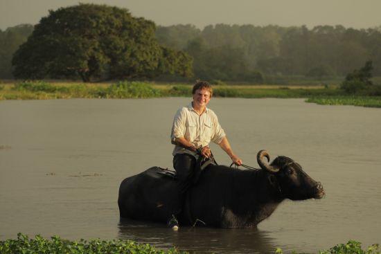 Дмитро Комаров осідлає буйвола і скуштує найстрашніший делікатес Бразилії