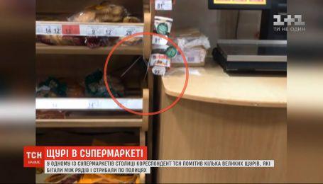 У столичному супермаркеті зафільмували великих щурів, які стрибали по полицях з хлібом