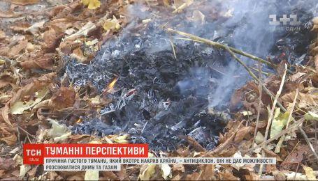 Экологи советуют не жечь опавшую листву: готовы ли украинцы отказаться от вредной традиции