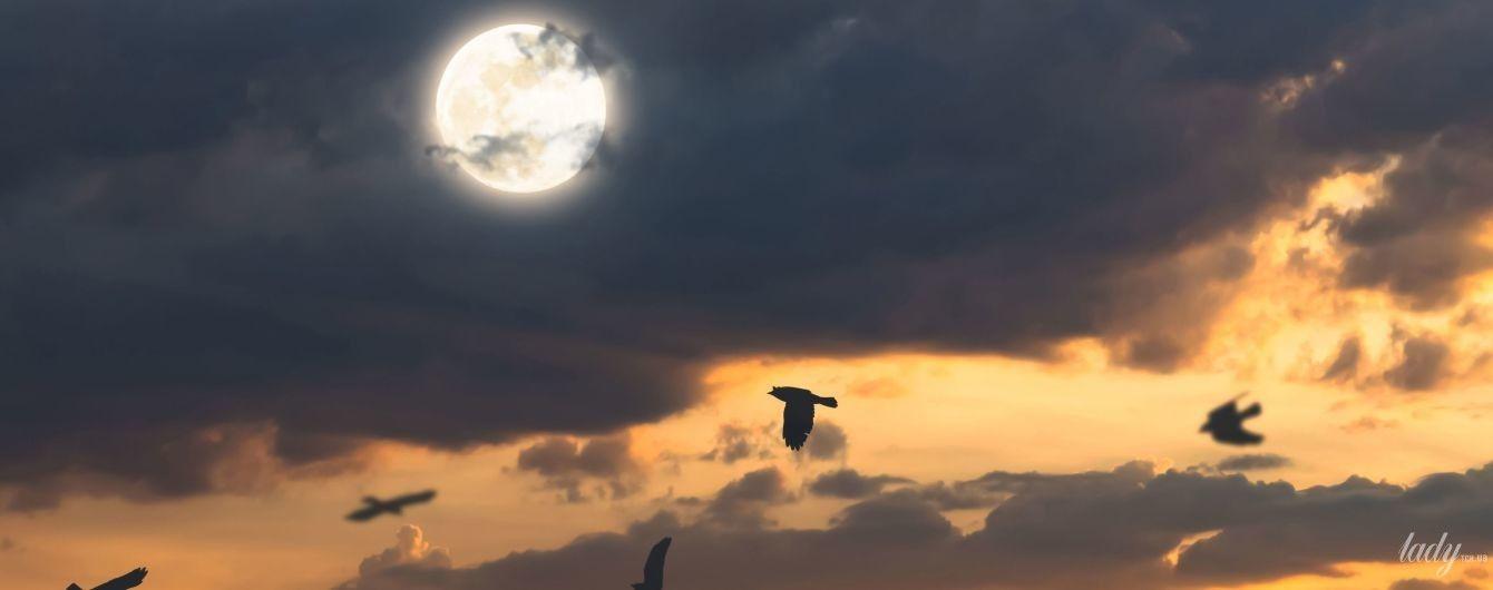 Гороскоп на 28 ноября для всех знаков Зодиака: день, когда не нужно тратить энергию на пустяки