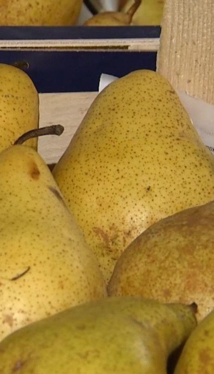 Сколько стоят груши в Украине и почему цена на них будет расти - ТСН узнавала