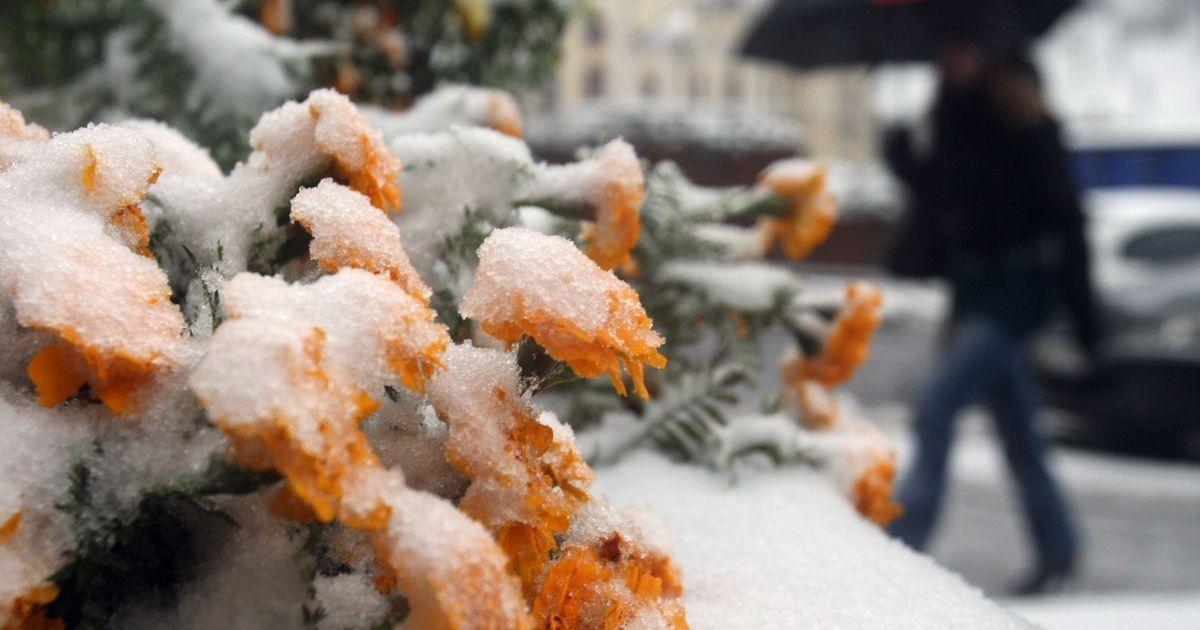 Погодні аномалії: які стихії вирують у світі і до якої зими готуватися в Україні