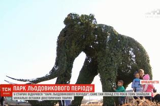 """На месте уникальных находок на Прикарпатье создали """"Парк Ледникового периода"""""""