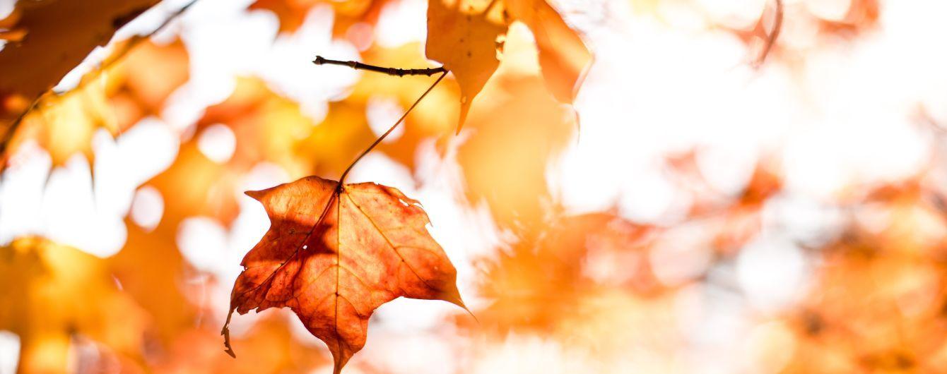 9 сентября: интересные обычаи, обряды и народный прогностик