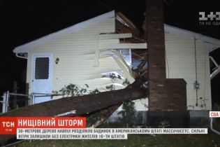 Поваленное штормом 30-метровое дерево располовинило дом в США