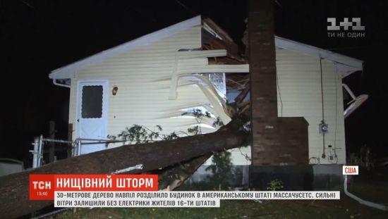 Повалене штормом 30-метрове дерево розполовинило будинок у США