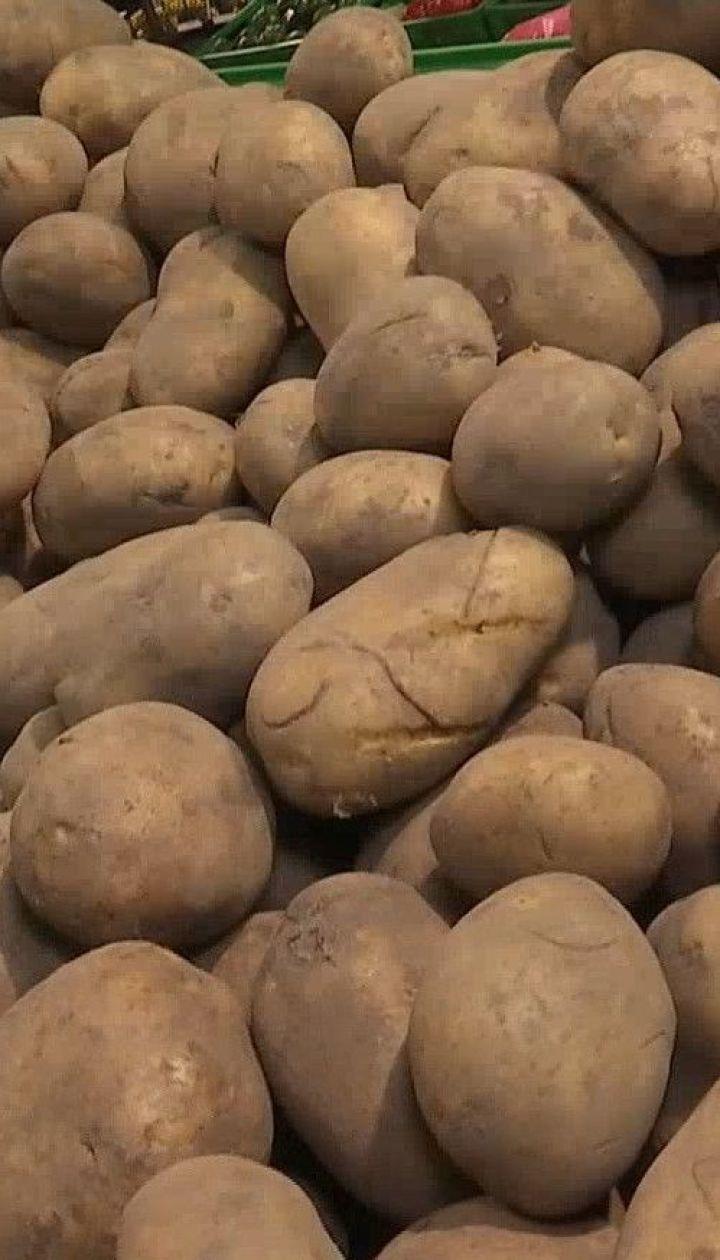 Как сэкономить на картофеле и как его правильно хранить