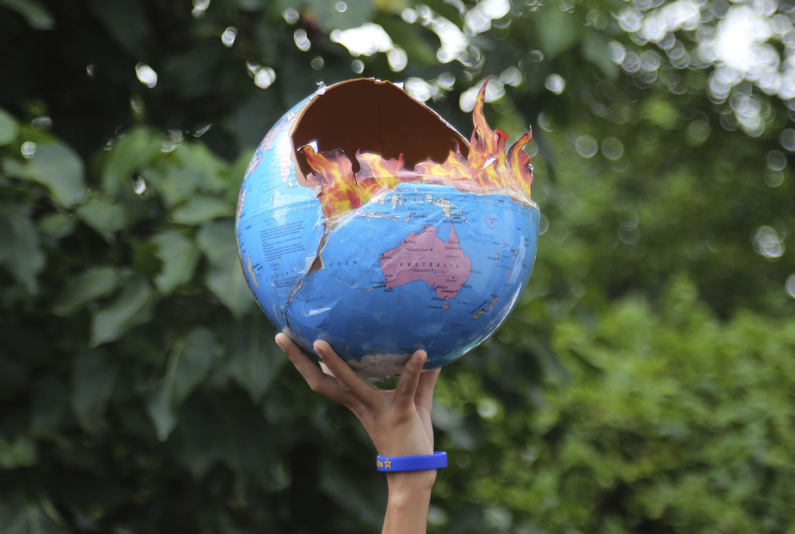 екологія, клімат