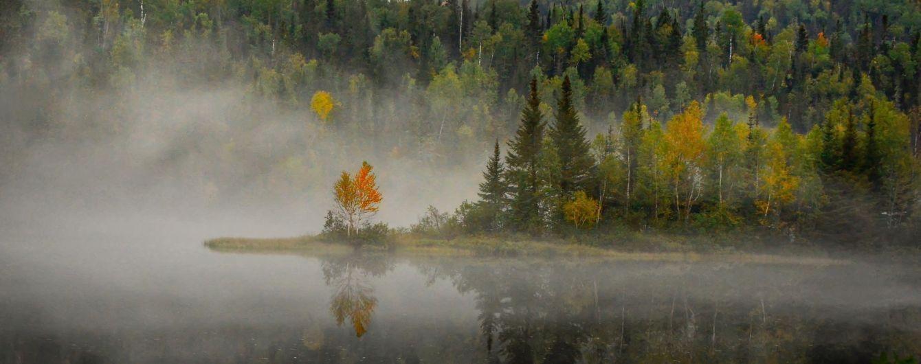 Туман, дожди и до 20 градусов тепла: погода на четверг